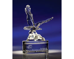 Eagle Landing Crystal Award
