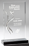 Deep Carved Swirl Wave Acrylic Award