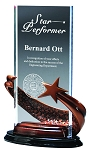 Bronze Brilliance Star Award