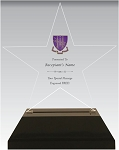Delta Phi Epsilon Acrylic Star Chapter Award