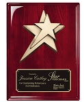 Rosewood High Gloss Finish Plaque With Metal Star 9