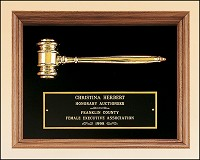 Walnut Shadowbox Framed Gavel Plaque